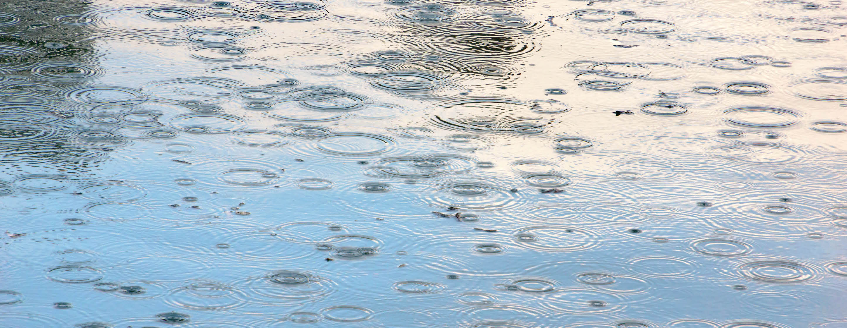 Regen- und Grauwassernutzung